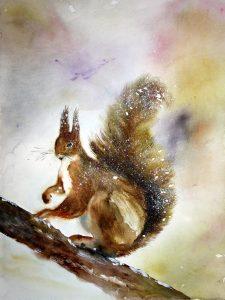 Ecureuil dans-la-neige